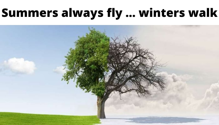 funny winter picture
